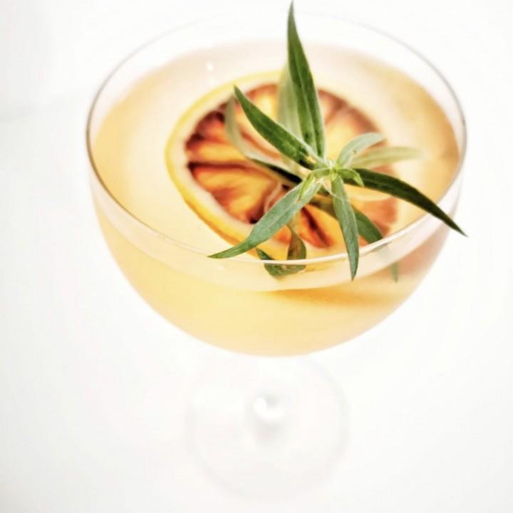 Rhubarb and Blood orange gin cocktaiil